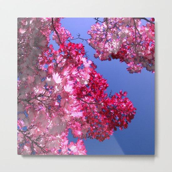 pink tree XI Metal Print
