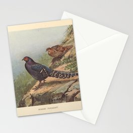 Vintage Print - A Monograph of the Pheasants (1922) - Mikado Pheasant Stationery Cards