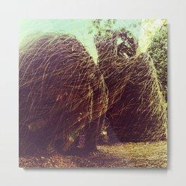nests Metal Print