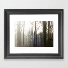 Winter 4 Framed Art Print