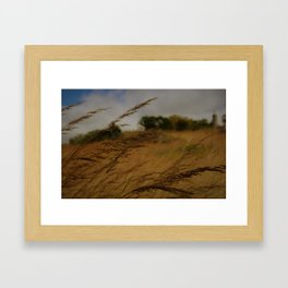Amber Waves Framed Art Print