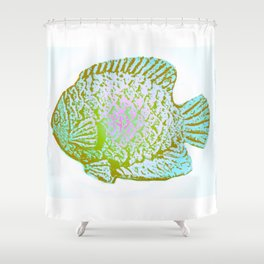 Sunfish Colors 3 Shower Curtain