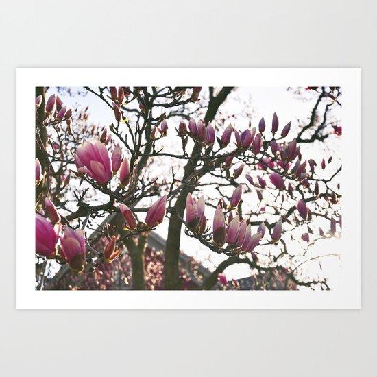 Flower Filled Days Art Print