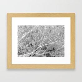 Incandescence bw inv Framed Art Print