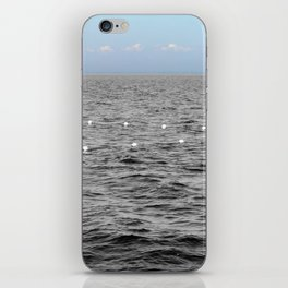 The Selby  iPhone Skin
