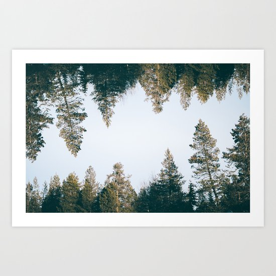 Forest Reflections IX Art Print