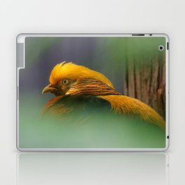 Emerging from the Green: Golden-Red Pheasant Laptop & iPad Skin