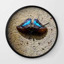 Blue Morpho Butterfly by Teresa Thompson Wall Clock