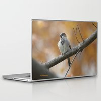sparrow Laptop & iPad Skins featuring Sparrow by Tammi Hofstetter