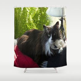 The Feline Queen Reposes (Gracie Queen of Chicago Collection) Shower Curtain