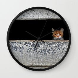 Mr. Holley's Cat Wall Clock