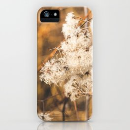 Warm Winter Afternoon iPhone Case