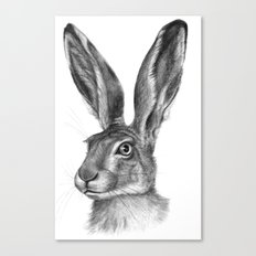 Cute Hare portrait G126 Canvas Print