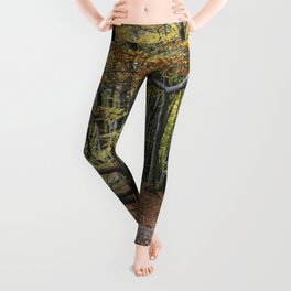 Downstairs To The End Of The Year Leggings
