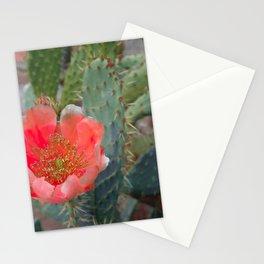 Desert Heat 3 Stationery Cards