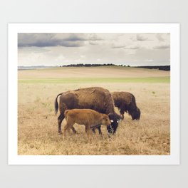Free, Together Art Print