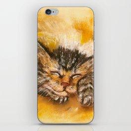 Sleepy Kitten iPhone Skin