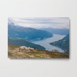 Enjoying Norway. Metal Print