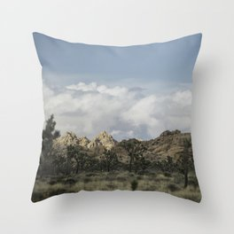 Joshua Tree in a blur Throw Pillow