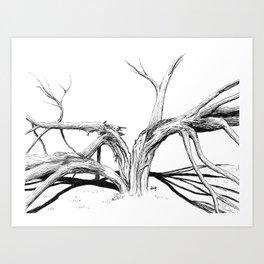 Thunderstruck tree Art Print