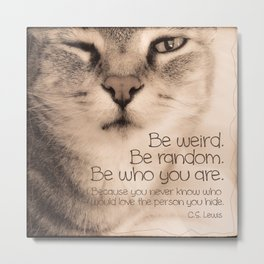 Wise Tabby Cat Metal Print