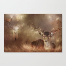 All Creatures Great & Small Canvas Print
