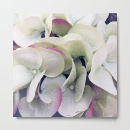 Elegant Bridal Bouquet: White Floral With Pink Accents Metal Print
