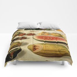Still Life with Fruit (with Scorpion and Frog) Comforters
