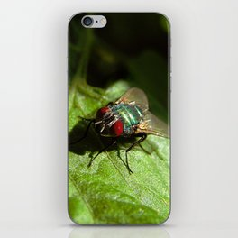 But A Fly iPhone Skin