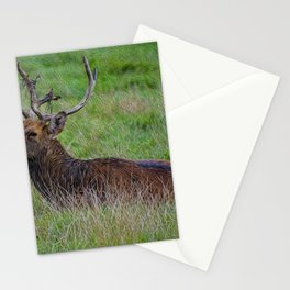 Resting Stag Stationery Cards