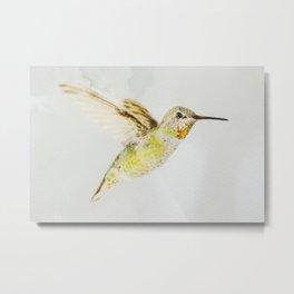 Hummingbird Watercolor Metal Print