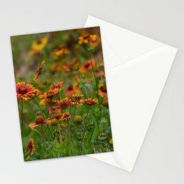 Indian Blanket Stationery Cards