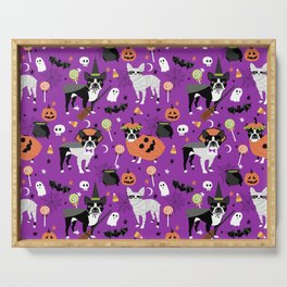 Boston Terrier Halloween - dog, dogs, dog breed, dog costume, cosplay cute dog Serving Tray