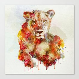 Resting Lioness Watercolor Painting Canvas Print