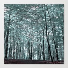 cold forest VI Canvas Print