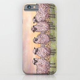 sunrise sheep iPhone Case