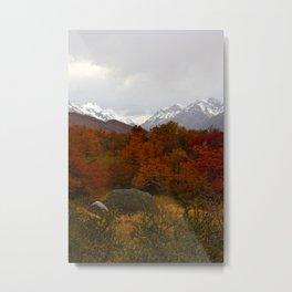 Patagonia 1 Metal Print