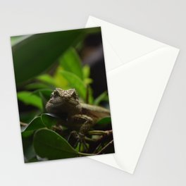 Little Lizard Stationery Cards