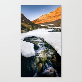 Riversong Canvas Print