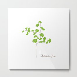 Maidenhair Fern Illustration Botanical Print Metal Print