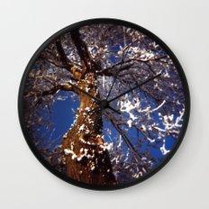 Frosty Wall Clock
