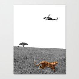 Cheetah's Prosper Canvas Print