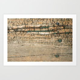 Rustic Wood Turquoise Paint Weathered and Aged to perfection Art Print