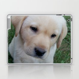 Whatever you want Lab puppy Laptop & iPad Skin