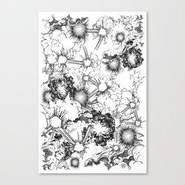Explosions Canvas Print