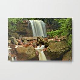 Douglas Falls Metal Print
