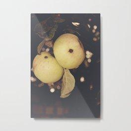 Apple photography Metal Print