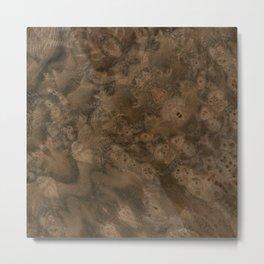 Walnut Burl Wood Metal Print