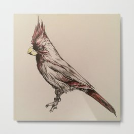 Original Cardinal Pencil Drawing Metal Print