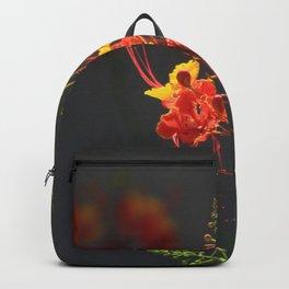 Desert Fall Colors II Backpack